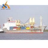 6000 dwt buque granelero