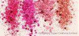Glanzend schitter Poeder Vastgestelde Chanmpange de Vlokken van de Spijker van de Decoratie van de Kunst van de Spijker van Paillettes van de Lovertjes van de Spijker van de Steen van Fonkelingen (nr-49) toenam