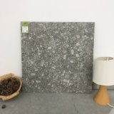 Terrazzo natürlich/Keramikziegel des Lappato Aufbau-600X600mm (TER604-CINDER)