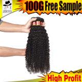 Ainsi cheveu brésilien Curlys de Vierge de pente de la beauté 9A