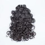 100% необработанные Virgin малайзийской наиболее востребованных волос волосы Малайзии