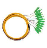Treccia monomodale della fibra di 12 memorie della fibra di Sc/APC