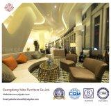 Hotel económico Furiniture para la sala de estar con el sofá fijado (YB-D-1)