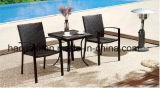 屋外の/Rattan/庭は/テラス/ホテルの家具の藤椅子及び表セットした(HS 1232C&HS 6127ET)