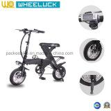 elektrisches Fahrrad des populären Falz-48V mit Motor des Pinsel-250W