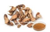 Extrato da raiz de Galangal da qualidade superior de 10%~98% Galangin, 10:1, 20:1