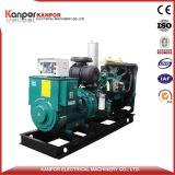 Weichai 240kw zum Biogenerator-Set-Preis des gas-728kw konkurrierend