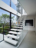 Escadaria de madeira do passo dos trilhos de vidro novos do projeto