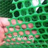 PE/PP plaine en plastique de filets, maille plate en plastique