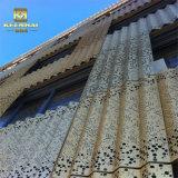 L'extérieur décoratif ondulé perforé Metall panneaux de revêtement mural
