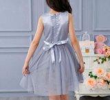 Платье маленькой девочки, милая юбка, Baby Garmment