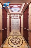 Elevador de Toyon para o elevador Home do elevador e do passageiro e o elevador residencial