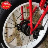 大きい昇進26inchの脂肪質のタイヤの電気バイク