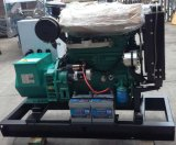 Комплект генератора природного газа комплекта генератора 30kw Biogas двигателя внутреннего сгорания