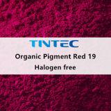 플라스틱 (Quinacridone 안료)를 위한 유기 빨간 안료 19