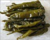 熱い販売の新しい穀物の優れた品質漬物の緑のChillis