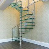 El vidrio interior del diseño de las escaleras camina escalera espiral con la barandilla de cristal
