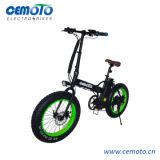 20*4.0 지방질은 En15194 Foldable 바닷가 함 전기 자전거를 피로하게 한다