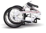 여자를 위한 경량 알루미늄 접히는 자전거 3 속도 새 모델 도시 자전거