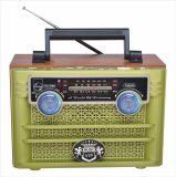 FM/Am/Sw 3 de Draagbare Radio van Banden met Spreker USB/TF/Rechargeable/Bluetooth