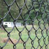 직류 전기를 통하는 PVC 입히는 사슬 철사 중국 우수한 메시 50X50mm 검술
