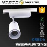 Resistente al agua gran cantidad de lúmenes de luz LED regulable COB vía