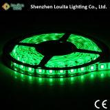 Striscia flessibile impermeabile 5050 di DC12V DC24V RGB LED
