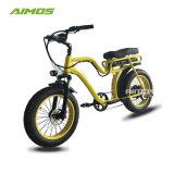 Vitesse Max 38km/h Fat pneu vélo électrique avec moteur brushless 750W