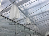 Сборные Интеллектуальная модульная система стальной конструкции рамы здание парниковых