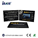 4.3 인치 LCD 기업 이름 비디오 카드