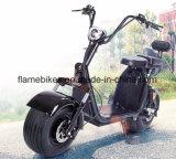 リチウム電池が付いている1500W電気バイク