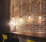 Factory Direct Ciel étoilé pendentif décoratif lampes LED