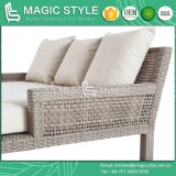 Daybed патио Wicker с Двойн-Кроватью Wicker Daybed ротанга сада Sunbed фаэтона валика напольной