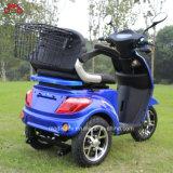 De goedkope L7e Door de EEG goedgekeurde Elektrische Chinese Vervaardiging van de Autoped van de Mobiliteit