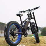Los neumáticos de la Grasa de Patentes de 2018, 750 W 1000W Bicicleta eléctrica