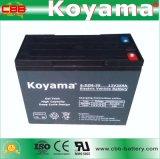 batería eléctrica 6-Dzm-35 (12V35AH) de la bici del almacenaje sin necesidad de mantenimiento del sello de la batería 6-Dzm-35