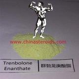 Polvere Trenbolone Enanthate o Parabolan degli steroidi di 99% per Bodybuilding