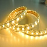 5630 Cordas Ww luz de tecto+W luz de LED