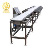 China Qualidade Instrumento