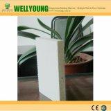 Instalação de placa de MGO (óxido de magnésio / Placa de eco para Prefab House