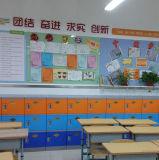 [أبس] خزانة خزانة في قاعة الدرس أو مكتب
