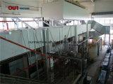 2018の高性能の高く有効な自動電気泳動のラッカー工場設備