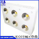 Glebe LEDは軽い900W完全なスペクトルの穂軸を育てるLEDライトを育てる