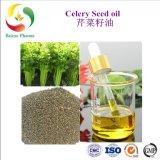 100% puro de fábrica Natural Mejor Precio Aceite de Semilla de apio Aceite con Fragancia aceite portador de los alimentos el sabor del aceite de la base de aceite esencial