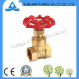Valvola a saracinesca d'ottone dell'acqua di alta qualità con il volante del ferro (YD-4007)