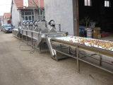 Bolla di aria e lavatrice delle verdure dello spruzzo che lava la macchina del Peeler