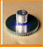 Engranaje de estímulo del estándar de ISO con los dientes 10 a 150