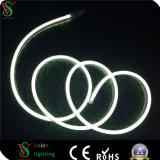 Ce, RoHS, indicatore luminoso variopinto della corda di IP54 LED per la decorazione esterna