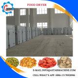 Secadora de frutas e vegetais comerciais de baixo preço da China