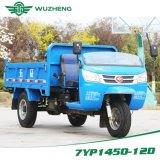 販売のためのディーゼルダンプのWawの中国人3の車輪の三輪車